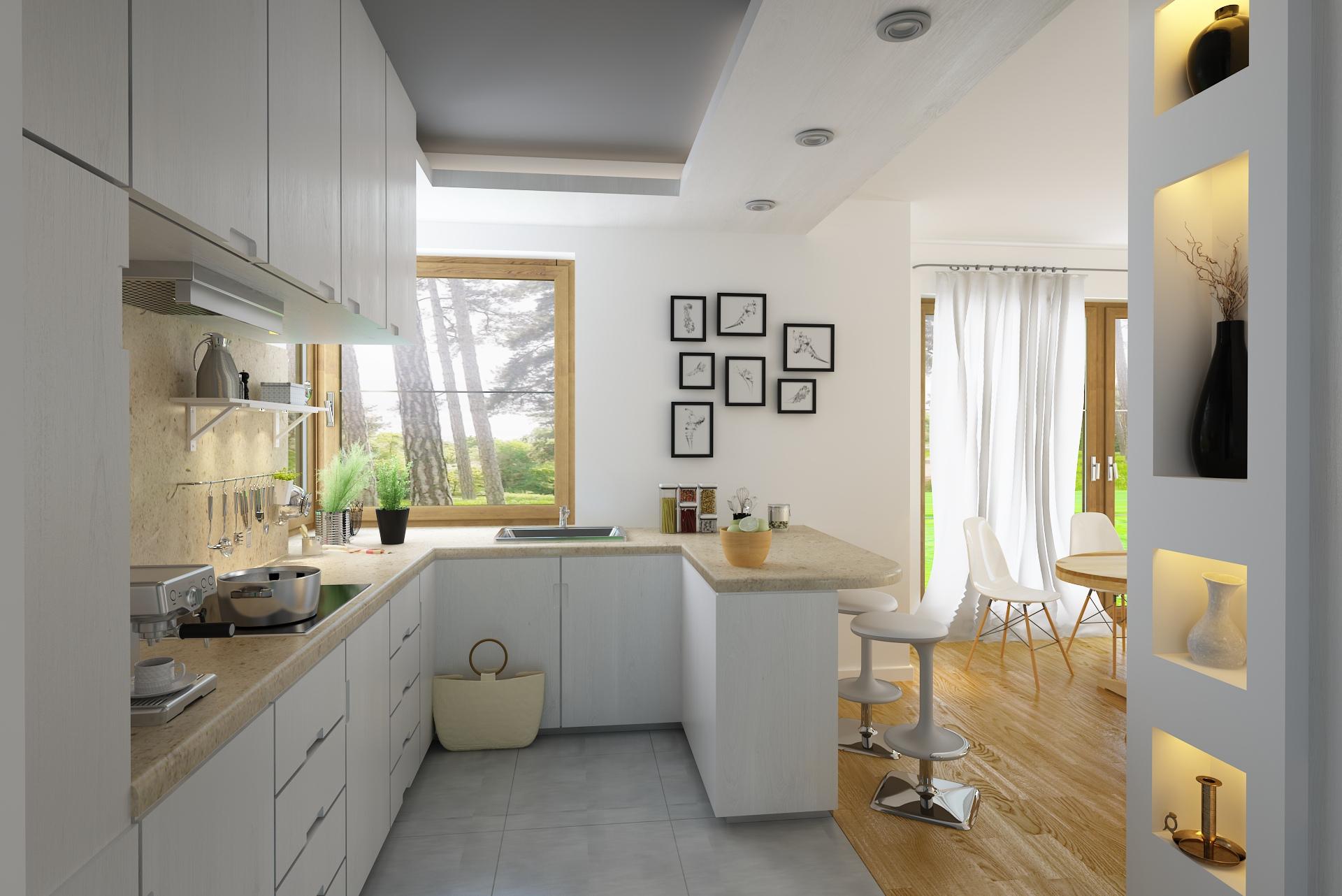 projekt-domu-DZD1-wnetrza-kuchnia.jpg